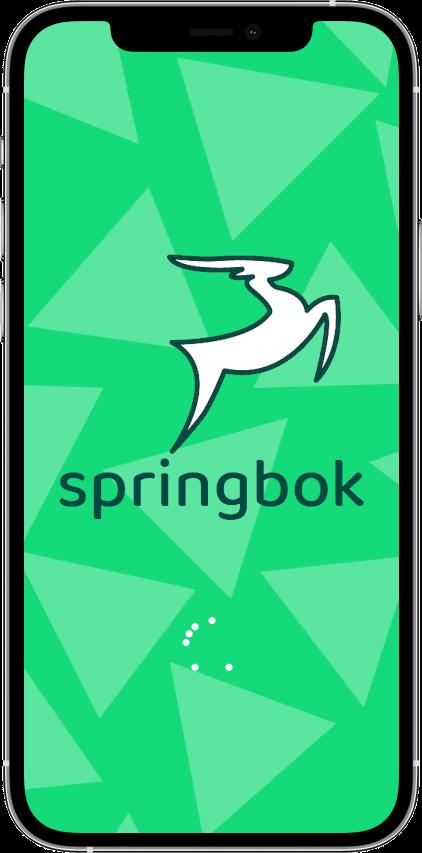 Springbok — маркетплейс фитнеса Сайт Артура Нецветаева — сайты, приложения, прототипы и оформление интерфейсов iPhone 12 Pro 1